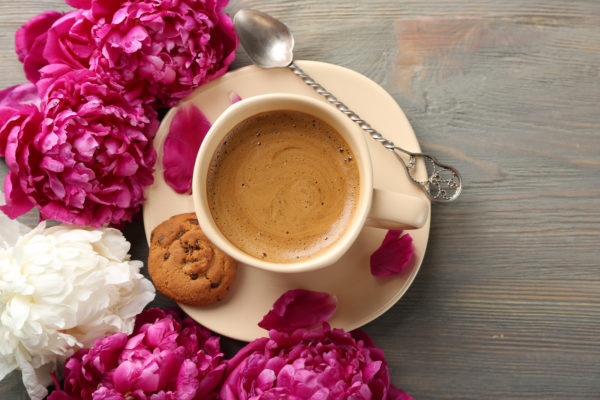 kávédivat